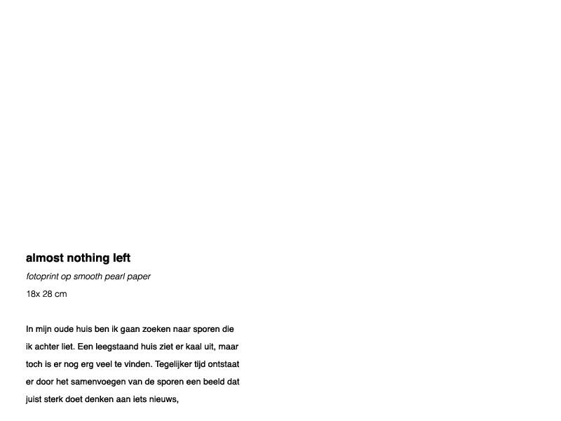 http://www.mariekederuig.nl/files/gimgs/46_almost-nothing-left.jpg